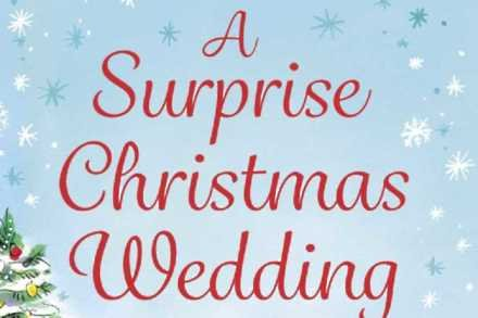 A Surprise Christmas Wedding