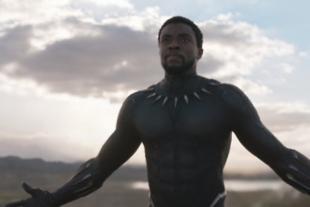 Chadwick Boseman as the brilliant Black Panther / Picture Credit: Disney