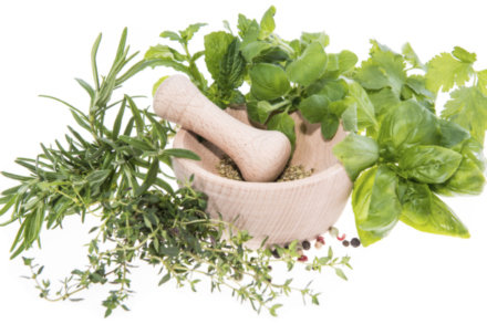 Fresh herbs don't only add flavour to meals