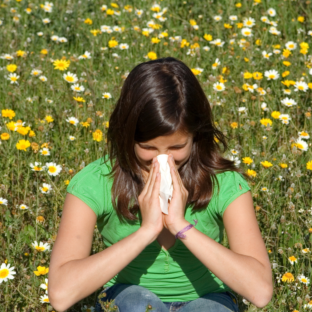 Surviving Hay Fever This Summer